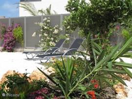 De tuin rondom de villa maakt er een klein paradijs van.