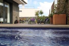 Het perfect onderhouden privé zwembad.