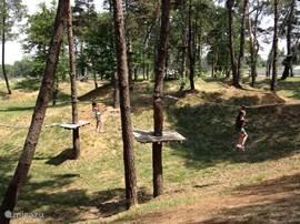 Op 20 minuten rijden vindt u een prachtig klimpark waar de kinderen (maar ook de volwassenen) langs boomtoppen kunnen klauteren.