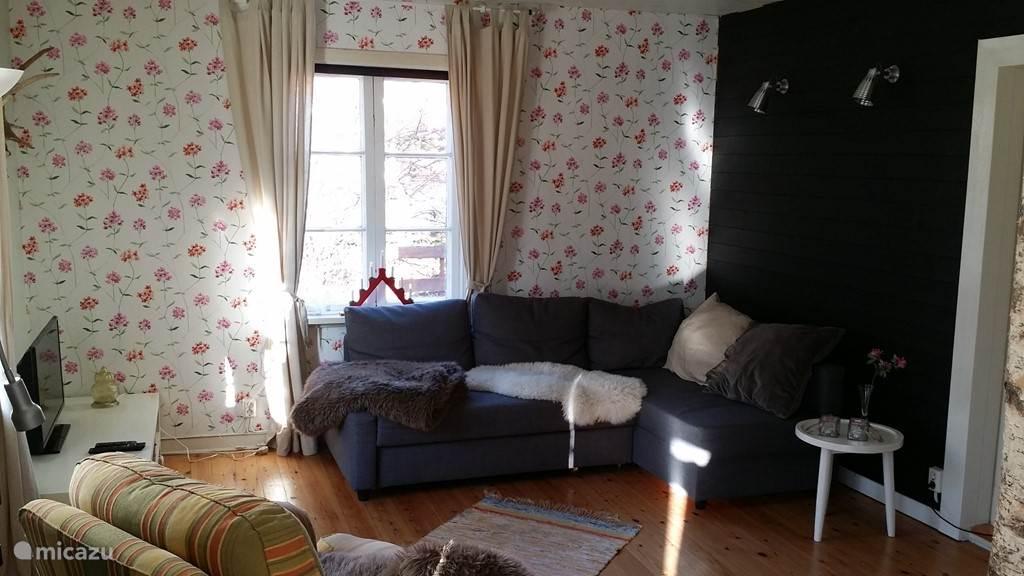 Gezellige woonkamer met openhaard en eindeloos tv kijken. Canaal digitaal biedt u de mogelijkheid niets te missen!
