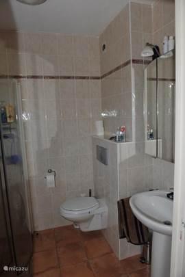 De badkamer beneden met douche, vaste wastafel en hangend toilet
