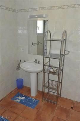 De badkamer op de verdieping met vaste wastafel, douche en toilet