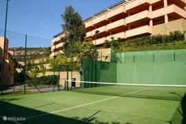 Paddelcourt / klein tennisveld