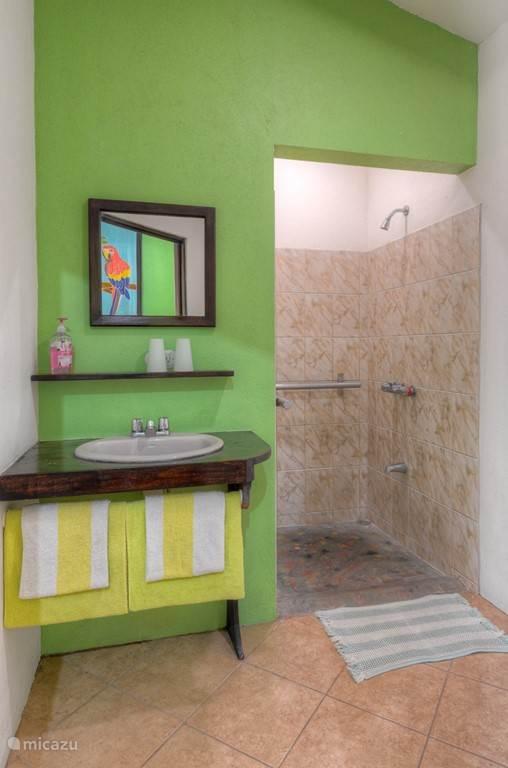 Groene cabine, douche en toilet ruimte. Rolstoel toegankelijk.