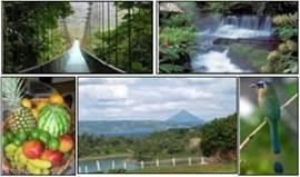 Verschillende parken en bezienswaardigheden rond Monte Terras.
