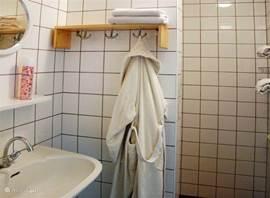 Eenvoudige badkamer met inloopdouche
