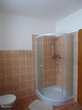 Bathroom with shower upper floor.