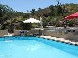 Het zwembad bij de hamlet meet 8 x 4 meter en wordt slechts gedeeld met de eventuele gasten van de gastenkamer.