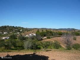 Een keur aan wandelpaden doorkruist de heuvels. Hier een del van route PR11_ Telheiros de Barro.