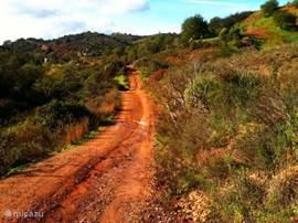 Wandelen rondom Santa Catarina da Fonte do Bispo. De oude verbindingswegen zijn vervangen door asfalt en worden nu gebruikt als wandelpaden. Tien maanden per jaar is de Algarve een geweldige wandelbestemming. Juli en augusts zijn daarvoor te warm.