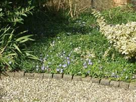 Zon, vlinders en een bloeiende bloemetjes in het perk. Het huis rondom beidt voldoende privacy en kunt u ongestoord zitten in de zon of op een fijne schaduwrijke plek.
