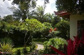 Tuin gezien vanaf terras van het huis