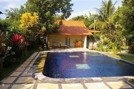 Heerlijk zwembad met terras