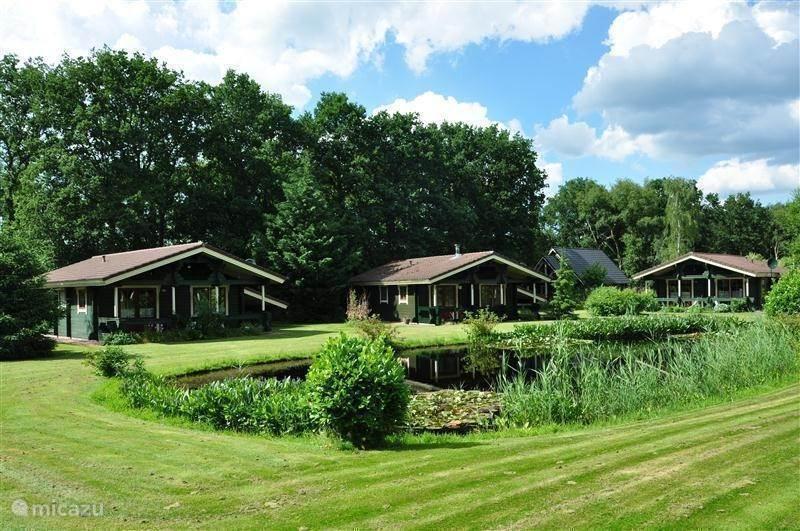 Vakantiehuis Nederland, Drenthe, Hoogersmilde Bungalow Finse bungalow
