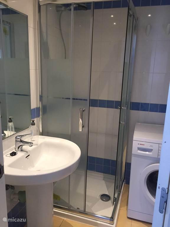 Badkamer 2 heeft een wastafel, douche, toilet en wasmachine