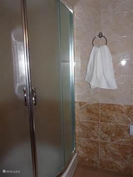 De badkamer met douche en toilet