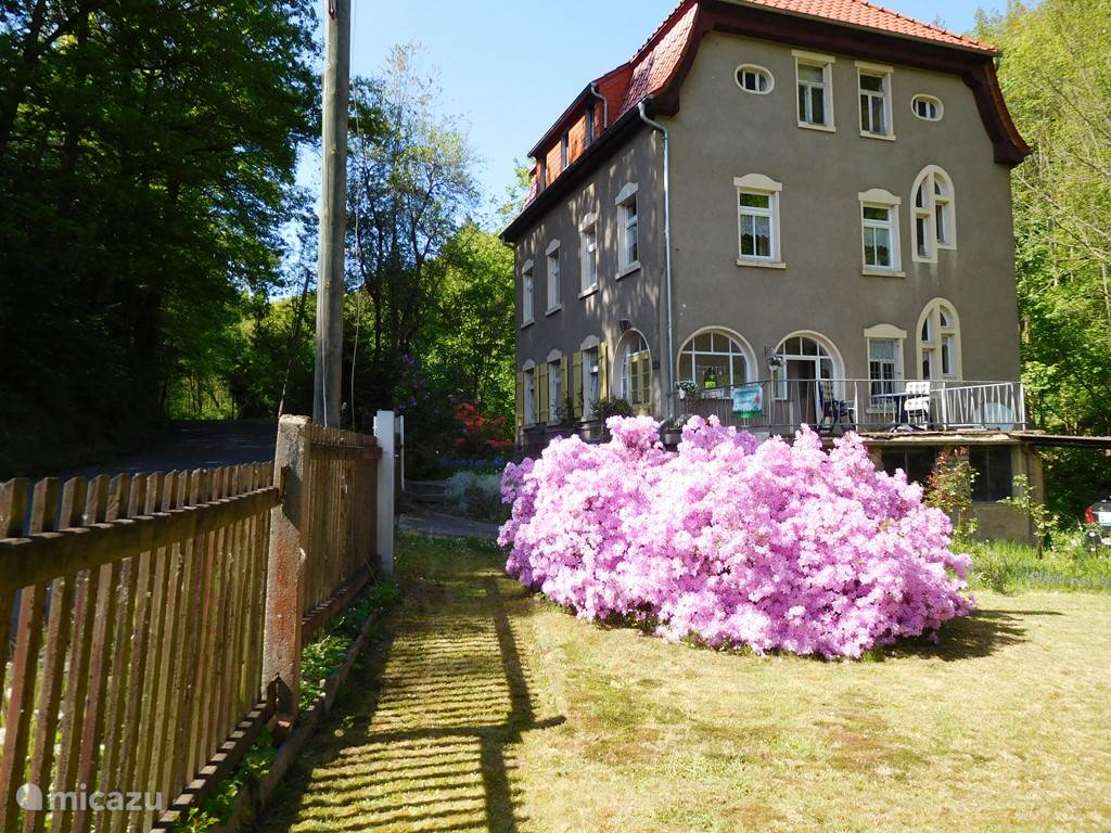 Vacation rental Germany, Saxony, Waldheim Holiday house Rosa's Garden