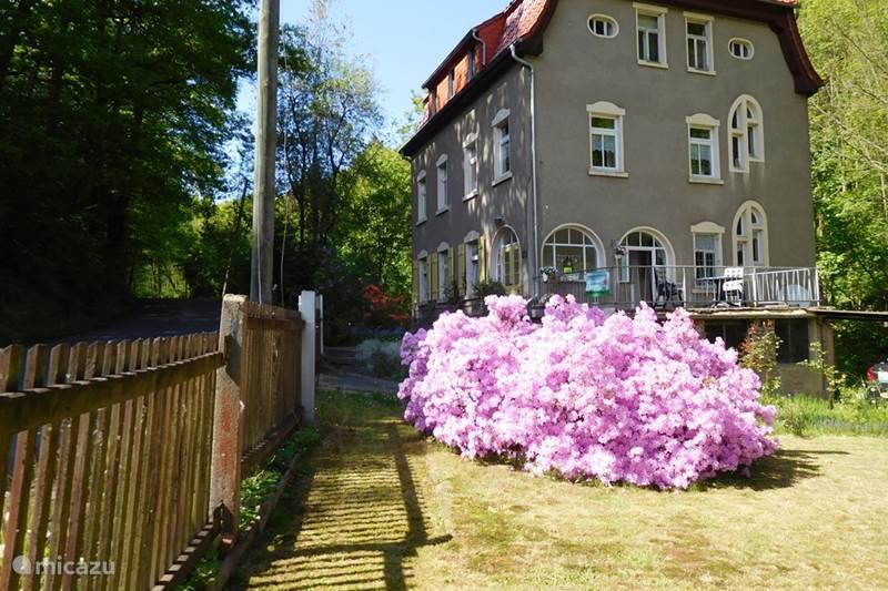 Vakantiehuis Duitsland, Saksen, Waldheim Vakantiehuis Rosa's Garten