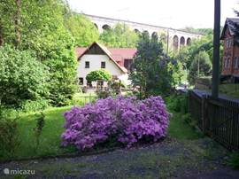 De tuin in het voorjaar met op de achtergrond het viaduct, waar elk uur een boemeltje over rijdt.