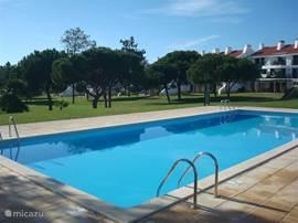 Het uitzicht op de tuin vanuit het zwembad