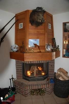 Openhaard in de woonkamer warm & gezellig