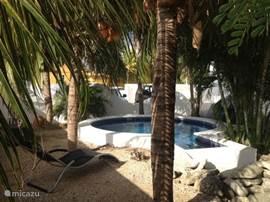 Tropische tuin met een heerlijk zwembad, waar u lekker van de zon kan genieten.