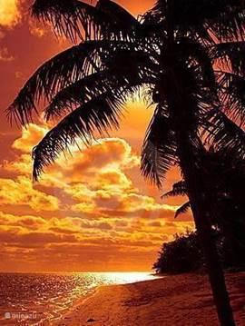 Villa Blou Curacao: uw plek onder de zon!