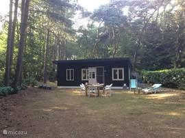 Een leuk gezellig vakantiehuis midden in een bosrijke omgeving!