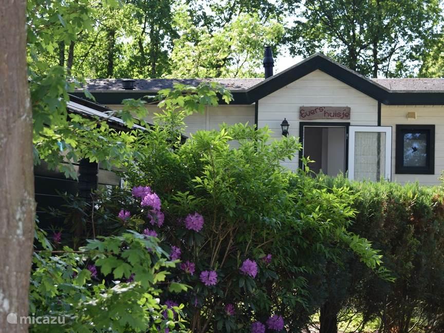 Vakantiehuis Nederland, Gelderland, Beekbergen chalet Evers'huisje