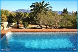 Vanaf het zwembad kijkt u over uw tuin naar de bergen en zee in de verte.De geuren en kleuren, de atmosfeer...Wij genieten er iedere dag nog intens van.