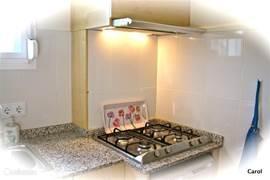 er zijn verschillende leuke details, oa weggewerkte kastjes met ...kruiden, zout peper,eigelijk alles dat u hoopt aan te treffen in een appartements-keuken