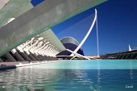 Valencia, met zijn prachtige moderne architectuur....U moet het een keer gezien hebben. Een hele dag, op zijn minst want er valt zoveel te zien. Er zijn zelf fietsen om dit autovrije gebied te verkennen. En als het te warm is, dan neemt u voor een half uur, de toeristentrein.