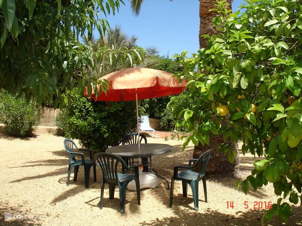 Een gezellig zitje in de tuin met fruitbomen.