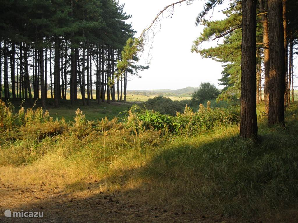 Natuurgebied Oranjezon.