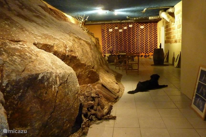 de wijnkelder, een goede plek om op warme dagen van een glas wijn te genieten.