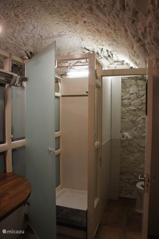 Bathroom in vaulting with shower and toilet and sink.
