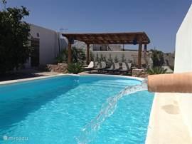 Achter het huis hebben we een prettig bescheiden zwembad aangelegd. Het is in gebruik van mei tot eind oktober.