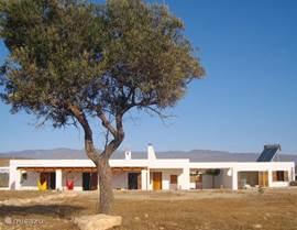 Onder het moderne uiterlijk zit nog steeds het oude huis met haar 50 cm dikke muren
