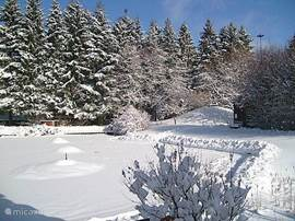 Winterse aanblik van onze vijver
