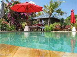 Villa in spacious private tropical garden.