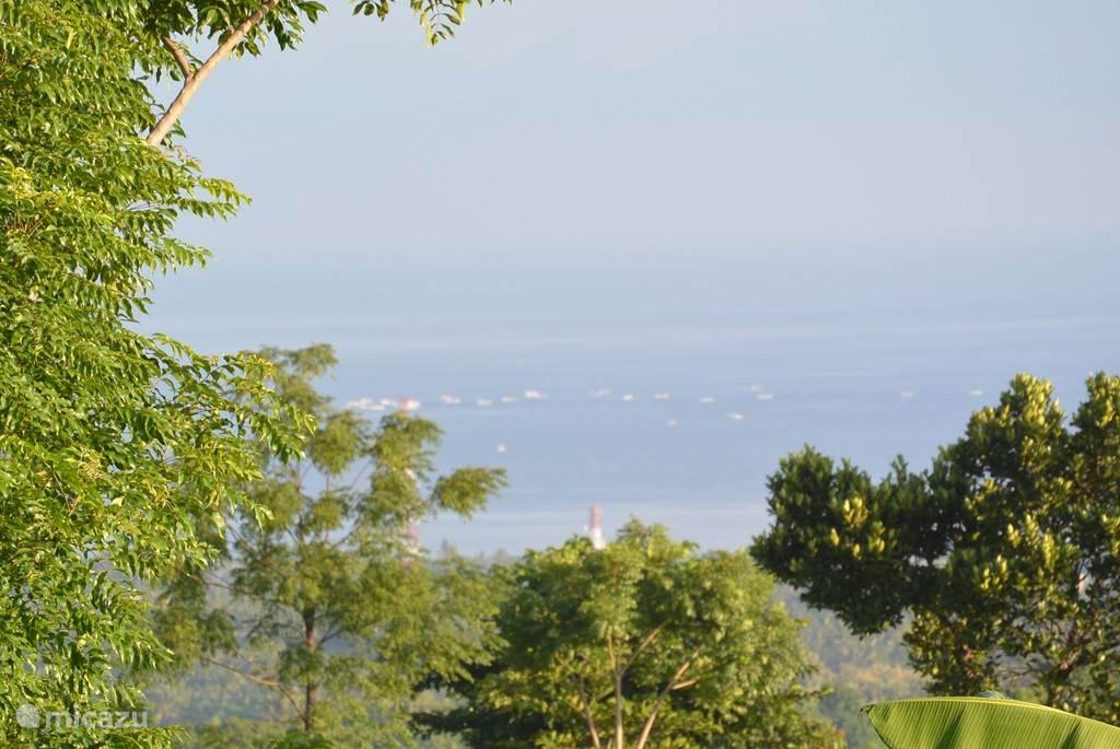 vanuit de villa is de dolfijnentour waar te nemen