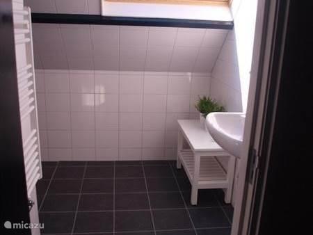 Badkamer op de eerste verdieping met ruime douche en wastafel.