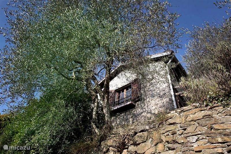 Vakantiehuis Italië – vakantiehuis Casa Righigna