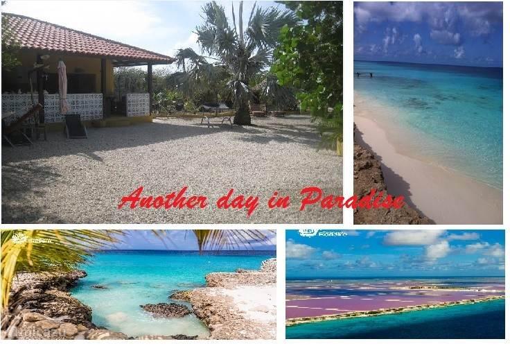 Vakantiehuis Bonaire, Bonaire, Belnem Studio Palma de Lima