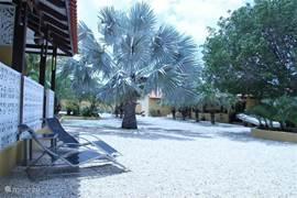 Uitzicht over de tuin vanuit een heerlijke hangmat bij de porches van de studio's