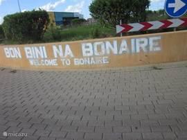 Tot ziens in onze studios op het o zo mooie Bonaire