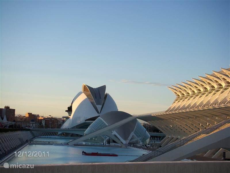 Binnen het half uur in de prachtige stad Valencia