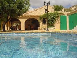 lekker genieten in het privé zwembad