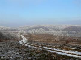 Vlak buiten ons dorp heb je een prachtig zicht over de heuvels van Mecsek, ook in de winter zoals je kan zien.