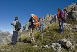 De omgeving ontleend zich perfect voor allerlei sportactiviteiten.Zo kan je er ondermeer bergbeklimmen,mountainbiken maar natuurlijk ook eenvoudige natuurwandelingen maken
